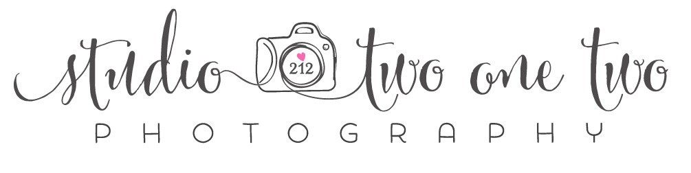Columbia, SC Wedding, Engagement and Portrait Professional Photographer, Studio Two One Two logo